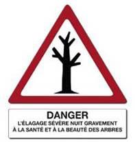 panneau stop au massacre des arbres